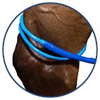 Ronde sproeier achterbeen